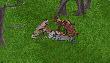 Wolf Avatar- FINISHED by forgotten-fire