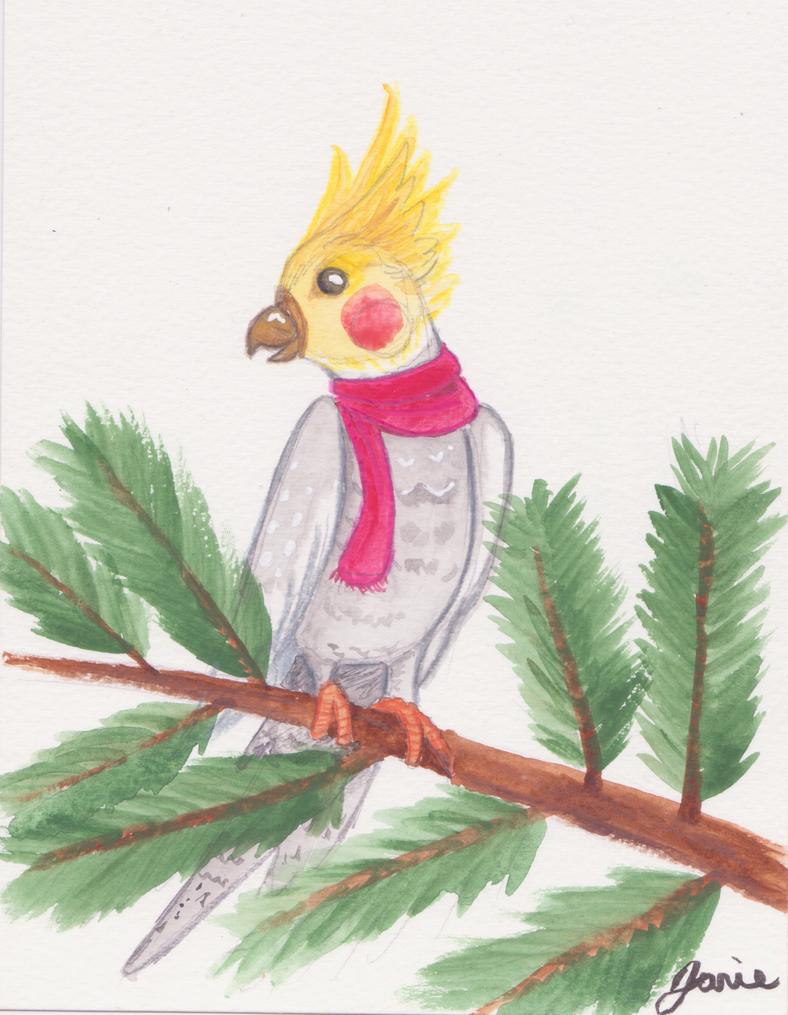 Winter Cockatiel by JanieChat