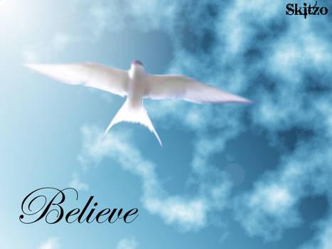 Dove Flying Skies