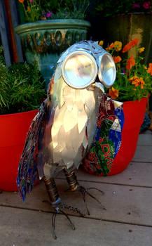 Soda Can Owl (side)