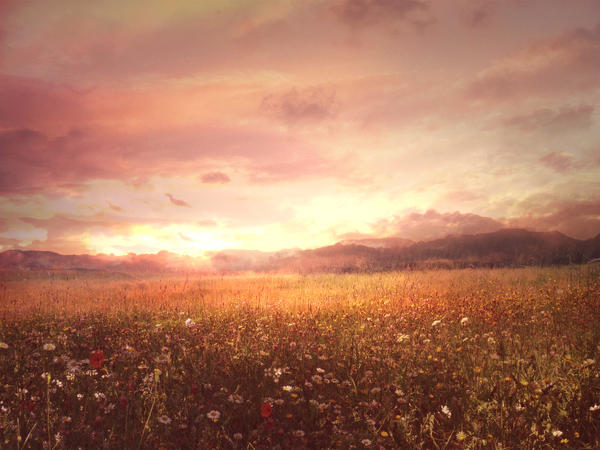 Premade Background 2 by Nephire