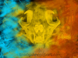 .:Abstract Animal God:. by tracki