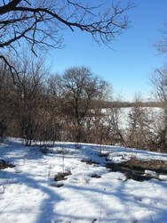 Minnesota Winter Sunshine by AnimalCO
