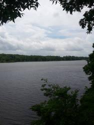 Chewalla Lake by AnimalCO