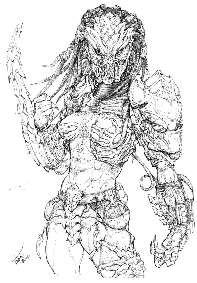 Line Art Vs Sketch : Female predator by tdm studios on deviantart