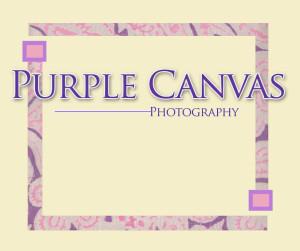 PurpleCanvasToronto's Profile Picture