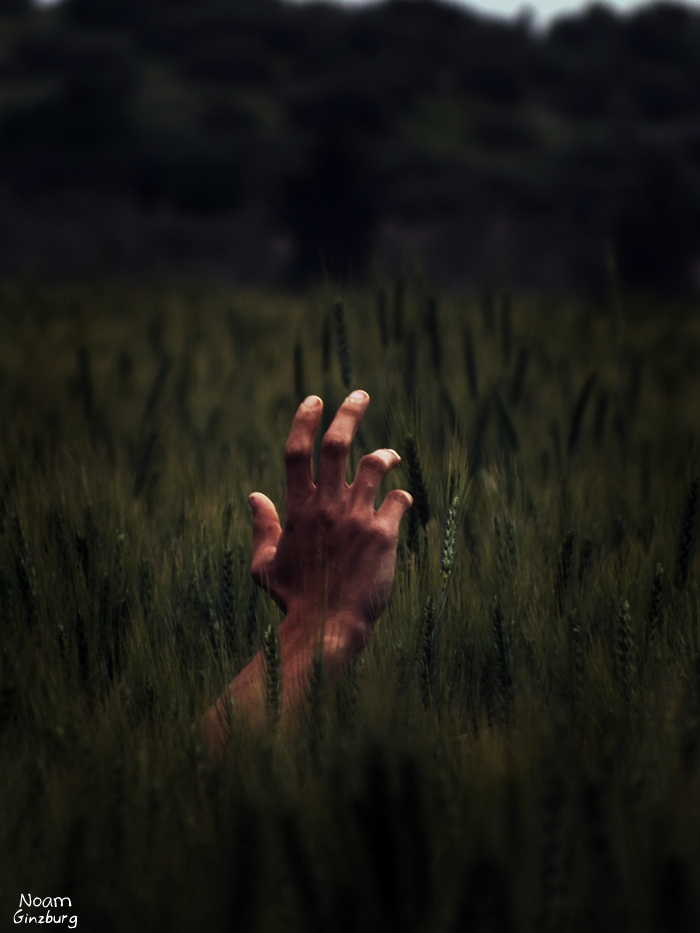 Drowning inside a field by noamanga