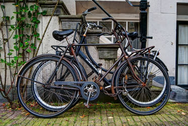 Dutch Bicycles by AfroDeziac