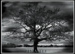 Finality by PRDesigns