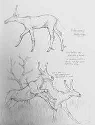 Stalkelope sketches by 9IndigoArt9