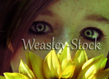 weasley-stock's Profile Picture