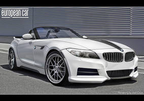 BMW Z4 Kitted by Gurnade