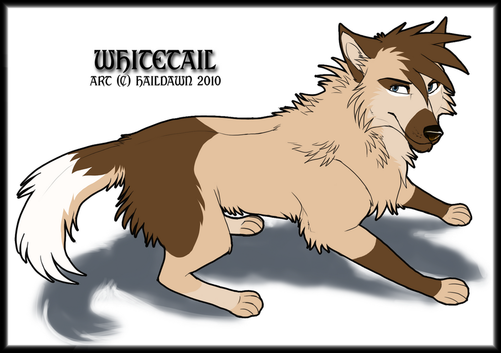 WhiteTail Commission by HailDawn