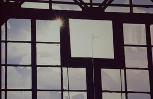 The Sun Ain't Shinin' No More... by Andryna