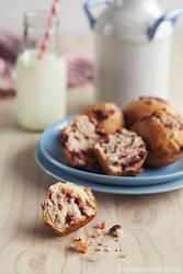 Cranberry Muffins by peachjuice