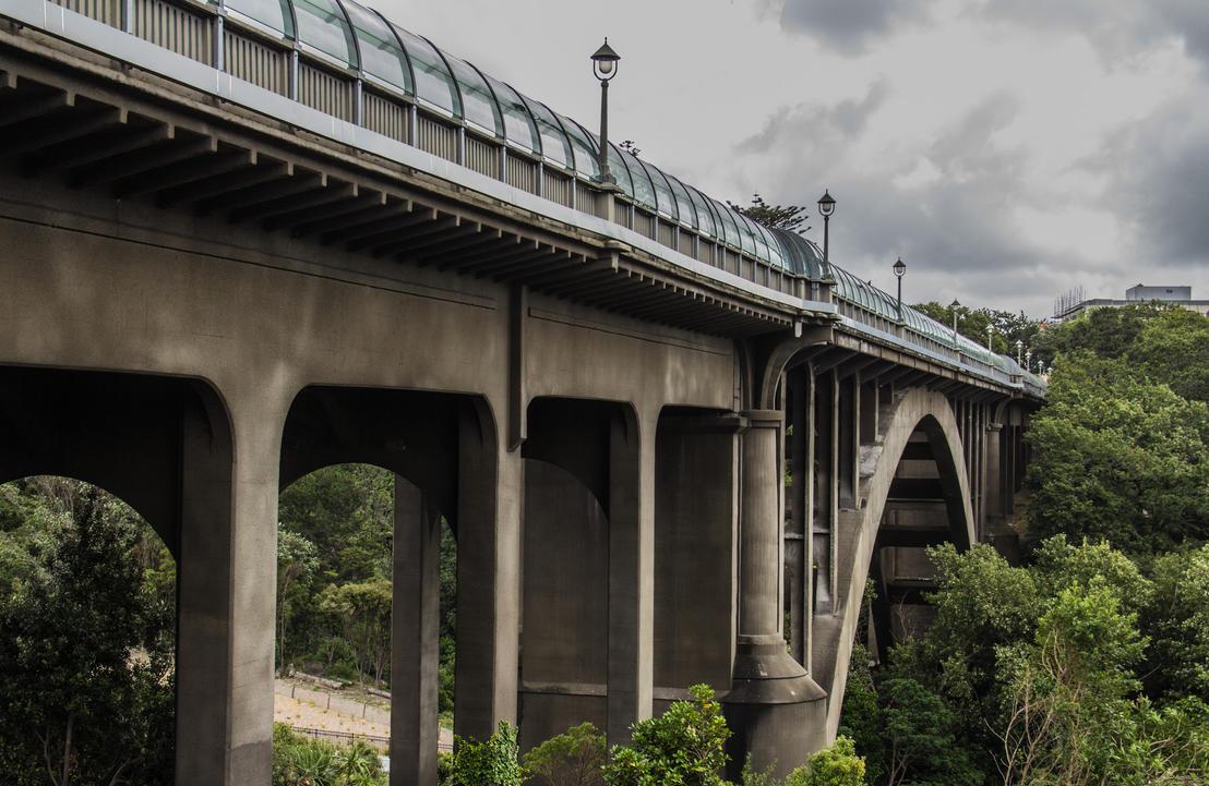 Grafton Bridge by UberPickleMonkey