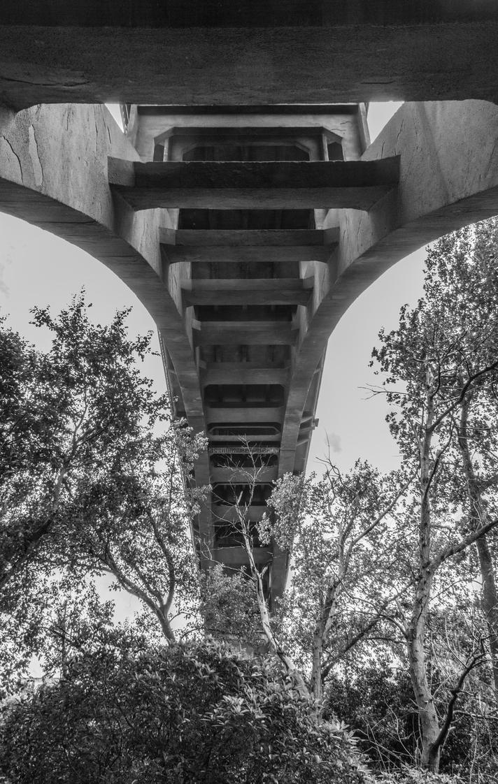 Below the bridge by UberPickleMonkey