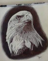 Ballpoint pen drawing by Rusalka95