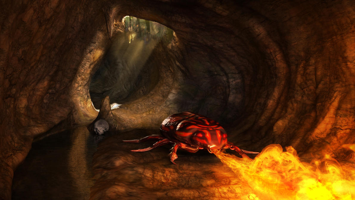The Fire Beetle's Lair... by Affet-kak