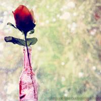 A Little Love by goRillA-iNK