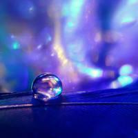 True Blue by goRillA-iNK