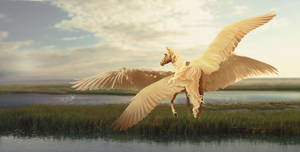 Freebird by oddmountain