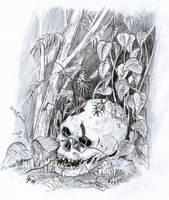 skull in the jungle by WekT