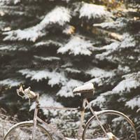 Emotional Winter by wariatka