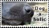 Dog-a-holic by Faolin-MT