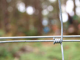 Barbed wire by CorentinChiron