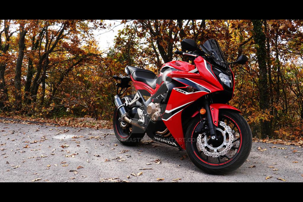 Honda Motorcycle Chat Rooms