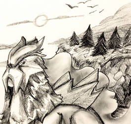 Sketched Entei