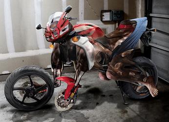 Literal Gearhead - Honda CBR600RR Motorcycle TF