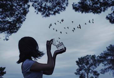 Freedom by Saesura
