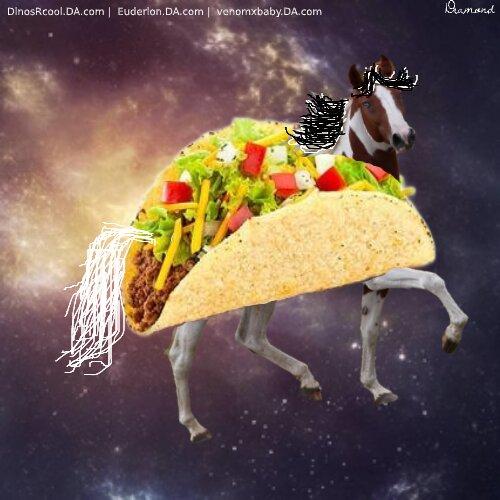 Taco Tue