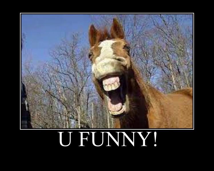 Horse meme soon - photo#44