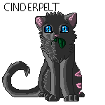 Cinderpelt Journal doll~ Free to use by Accalialove