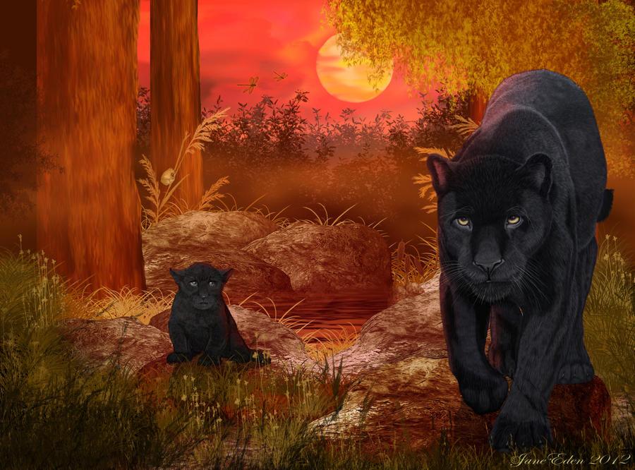 Black Jaguar 'Rare Sighting' by JaneEden