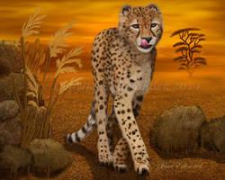 -Cheetah- by JaneEden
