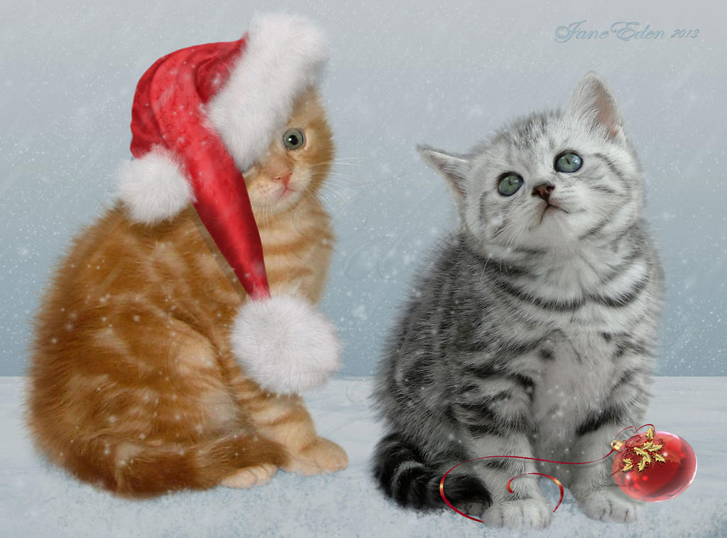 Kittens and Christmas by JaneEden