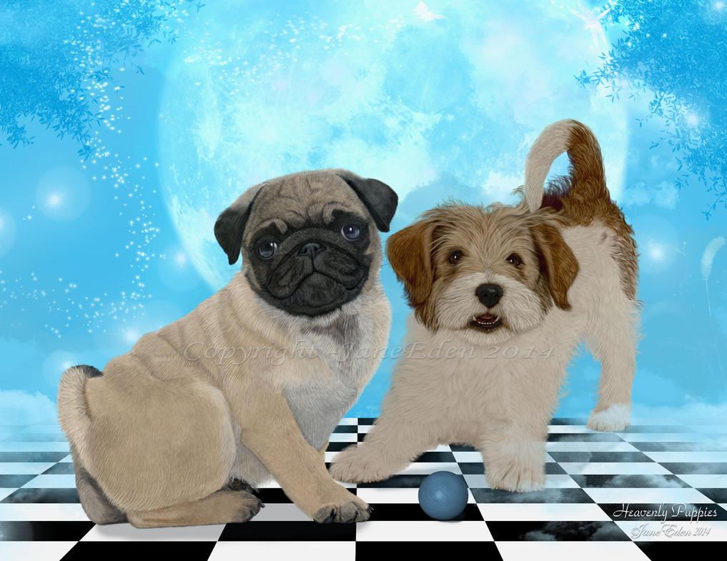 Heavenly-Puppies by JaneEden