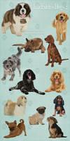 JaneEden's Dogs 2 - stock by JaneEden