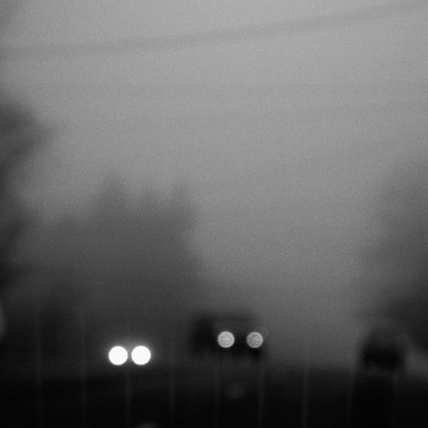 fog_722 by sjfbetty