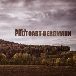 photoart-bergmann's Profile Picture
