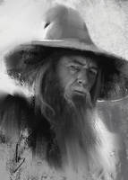 Gandalf The Grey by trungbui42