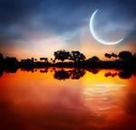 Your Night Sky.