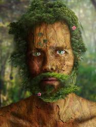 Treebeard. by LAWLZATJ00