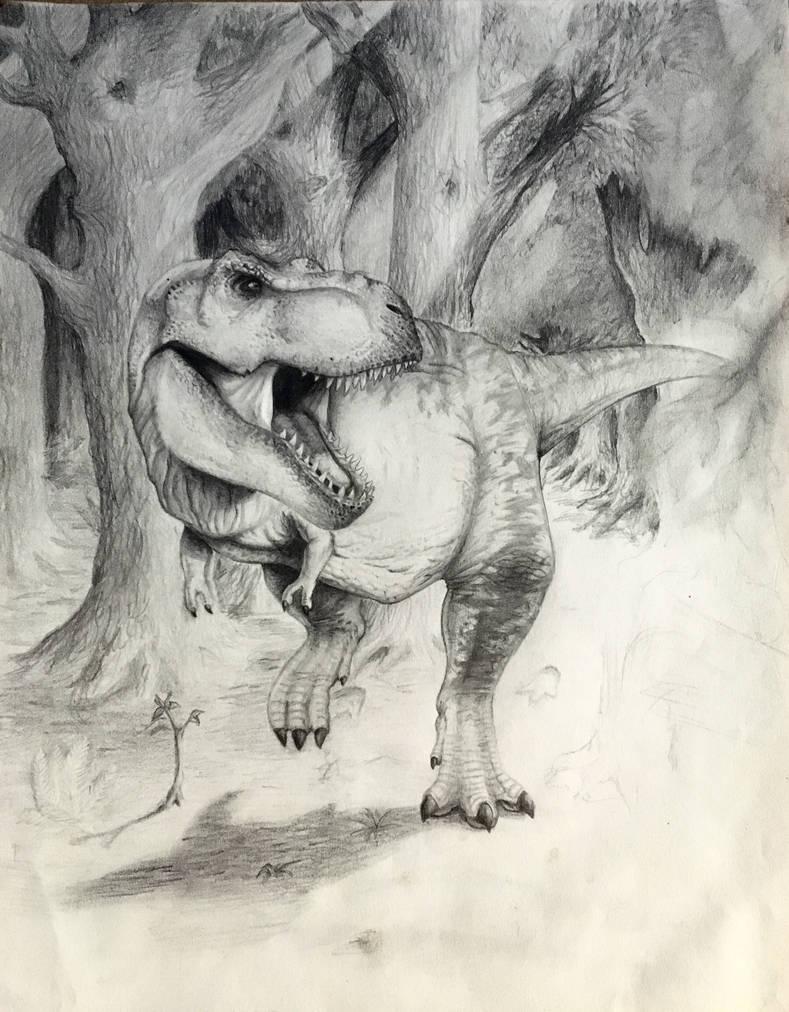 T rex pencil drawing by audiobrainiac