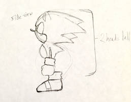 Sonic CD Character Model Study