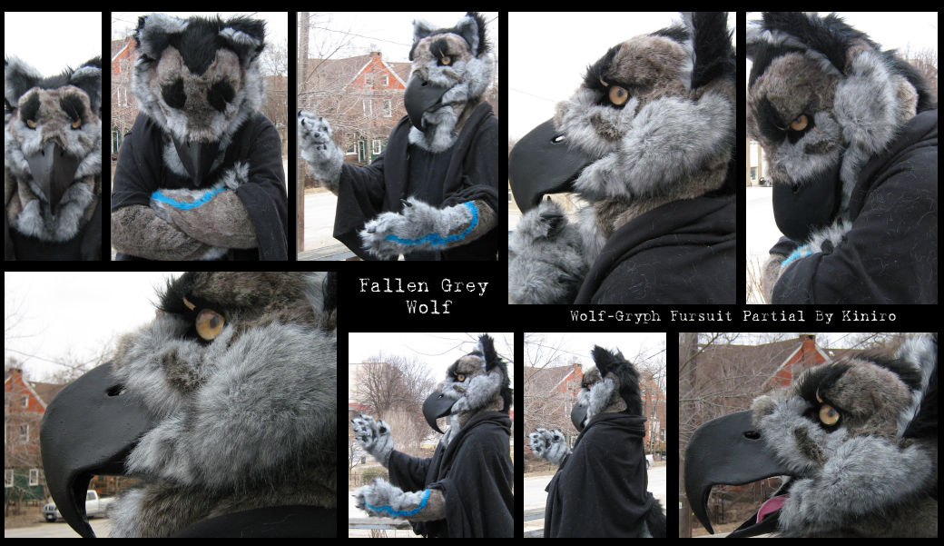 The Wolf Gryphon